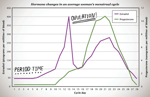 What are typical female hormone levels?